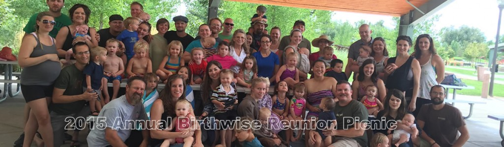 2015 Annual Birthwise Reunion Picnic
